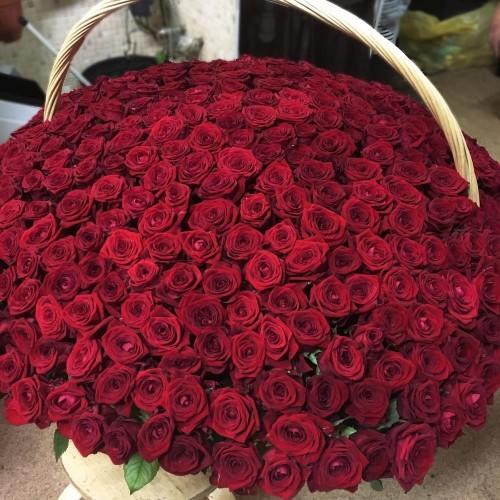 Купить на заказ Заказать 1001 роза с доставкой по Атырау с доставкой в Атырау