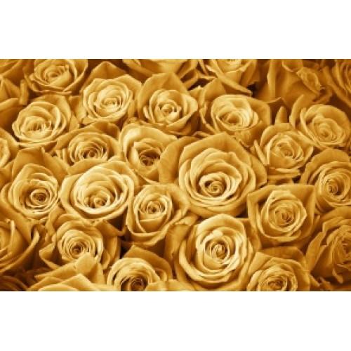 Купить на заказ Заказать Золотые розы 51 шт с доставкой по Атырау с доставкой в Атырау