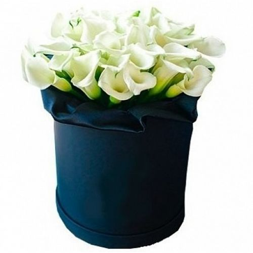 Купить на заказ Каллы в шляпной коробке (39 шт.) с доставкой в Атырау